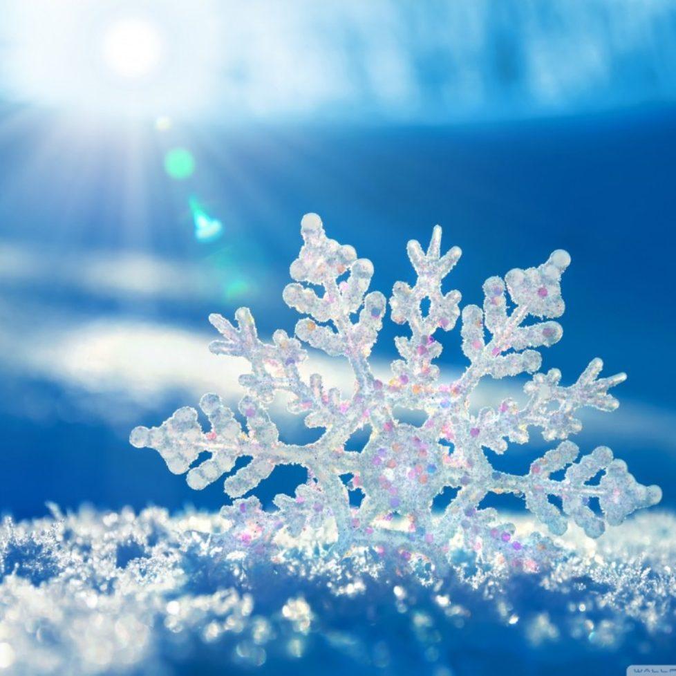 Facebook Snow Image